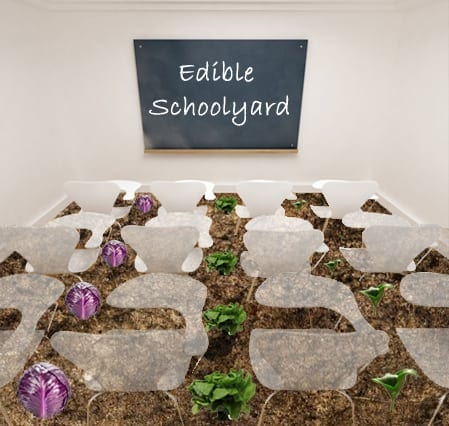 """Click to view the webinar """"The Edible Schoolyard Project: Mapping & Engaging the Edible Education Movement"""""""