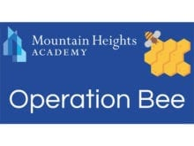 Operation Bee